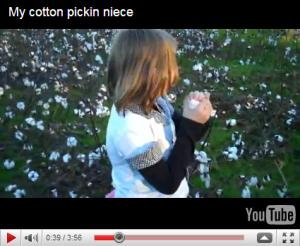 My niece picking cotton