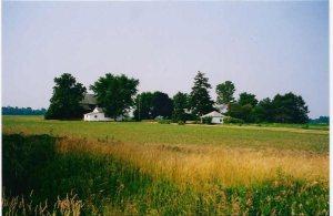 Ray's farm