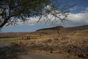 King Kamehameha's temple at Pu'ukohola Heiau