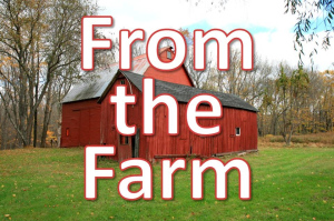 from-the-farm-big-text