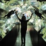 Jake in the kaleidoscope