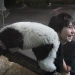Jake with a black & white lemur
