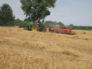 baling hay straw