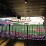 watching the Cardinals play ball