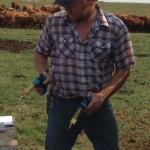 two shots per calf