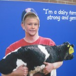 a plywood cutout where you get to be a dairy farmer