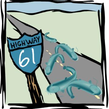 Highway 61 - the catfish highway?