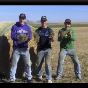Farmer Style parody of Gangnam Style