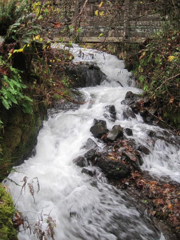 Wahkeena Falls, Portland, Oregon