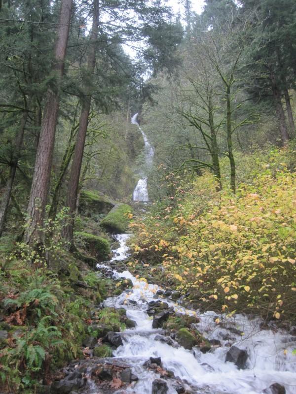Wahkeena Falls, outside Portland Oregon