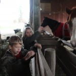kids in the barn with horses