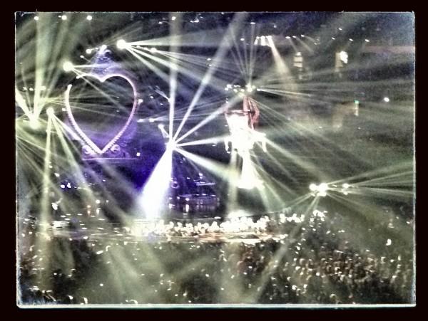 Pink concert Nashville Bridgestone Arena