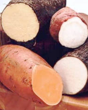 yams and a sweet potato