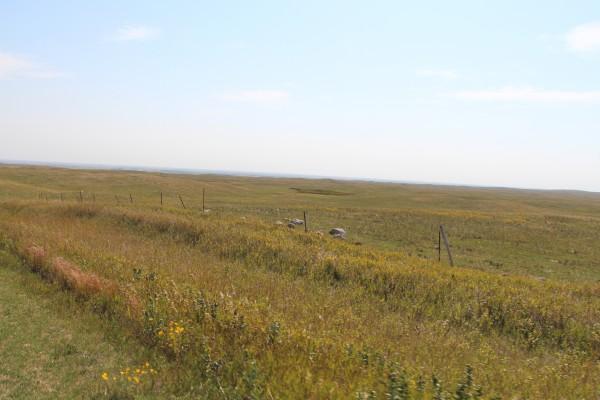 never-ending prairie