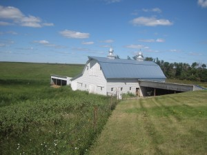 farm land with a barn