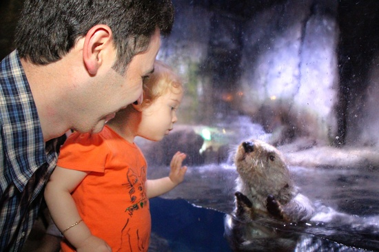 photo of a child & otter after processing