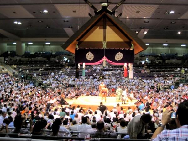 sumo arena & ring