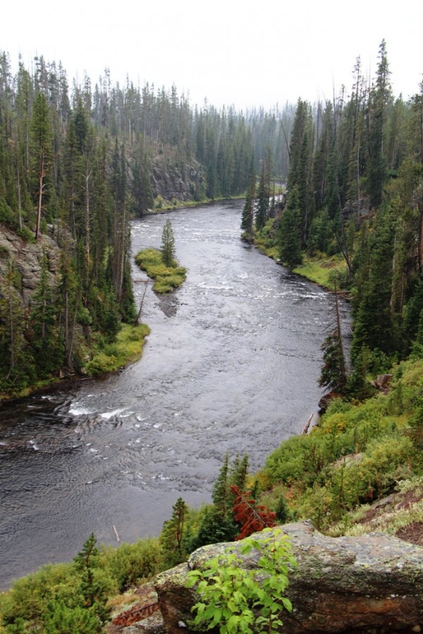 Lewis River Yellowstone