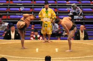 sumo pre-match stretching