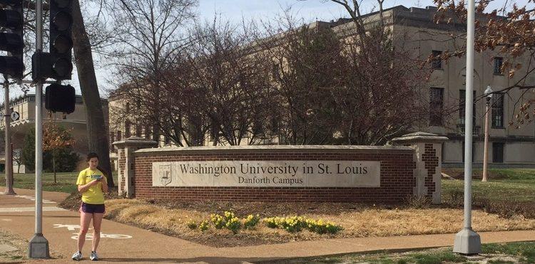 Washington University banner