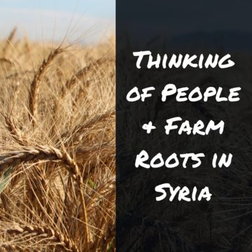 People & farm roots in Syria