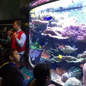 Smithsoian exhibit on ocean biodiversity
