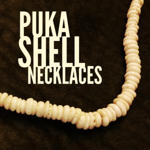 puka shell necklance