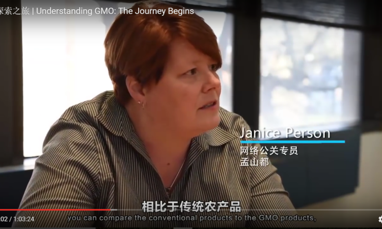 GMO documentary for China