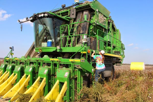 girl getting in a cotton picker